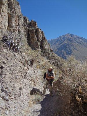 la descente dans le canyon de Colca