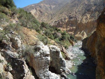 la rivière de l'oasis