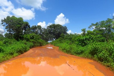 One of Guinea-Bissau's Better Country Roads