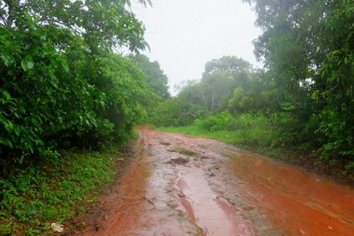 The Airport Road
