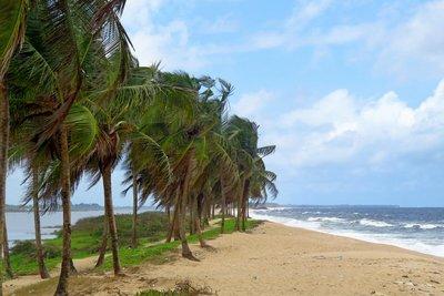 Harper Beach