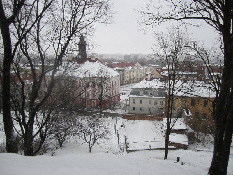 Roof top view: Tartu