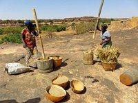 Women pounding millet