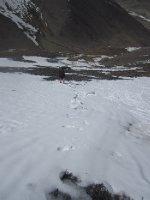 Mark struggling in the snow