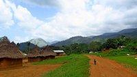 Mounts Nimba, WHS Guinea