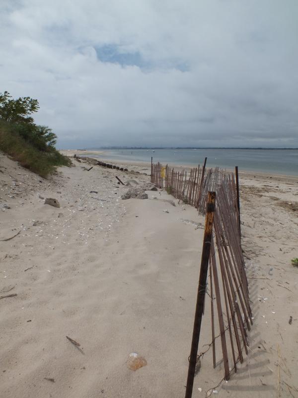 Jamayca Bay