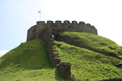 Totnes Castle - mottte and bailey