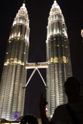 Petronas Towers from the park at night