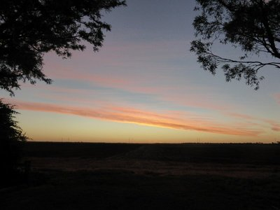 Darling Downs rural sunset