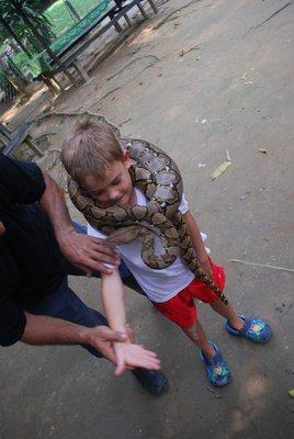 Bennett and the Snake