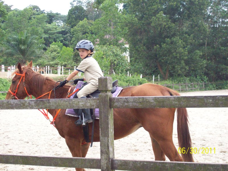Bennett at horse riding lessons