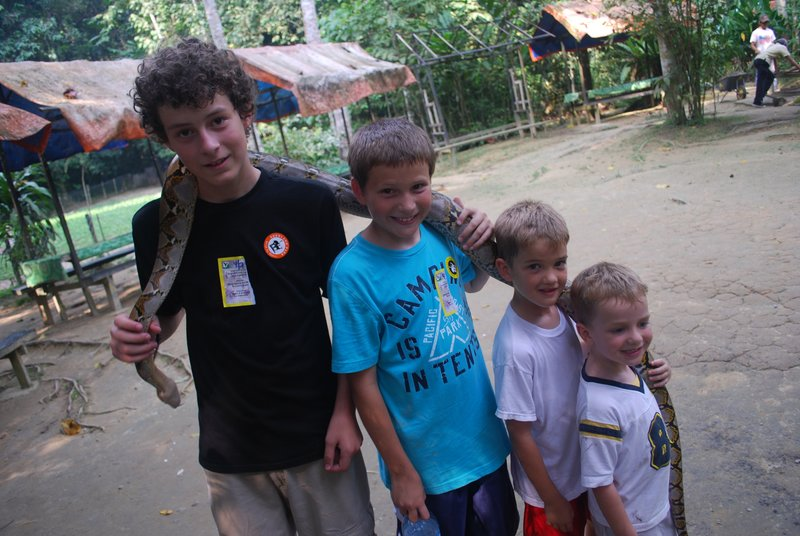 Boys and the Snake