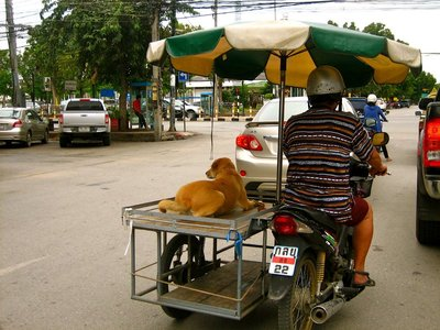 Riding in style in Thailand