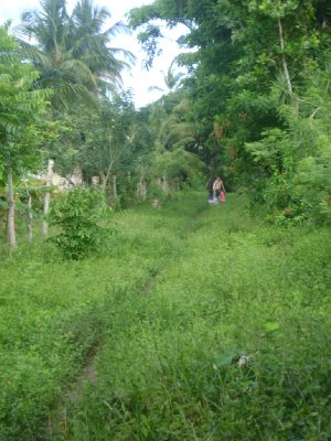 Walking the path of the locals