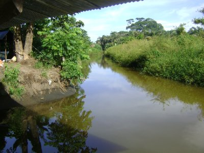 Canal off the Pacuare River