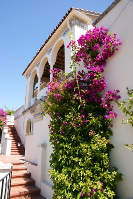 Casa Del Monte with beautiful flowering bush climbing up its fasade, Hearst Castle, California, US
