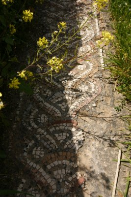 Discovering mosaics where you walk