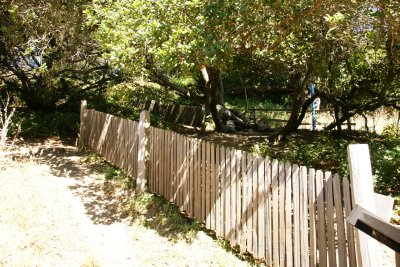 Fence divided into two and moved by several meters due to tectonic plates movement at the Earthquake trail, Point Reyes, California, US