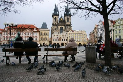 Old Town Square with so far calm pigeons