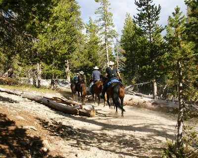 Horse riders around the Tuolumne Meadows area, Yosemite Park, California