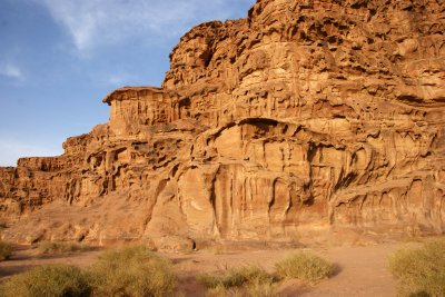 Intricate sandstone formations in the Wadi Rum area