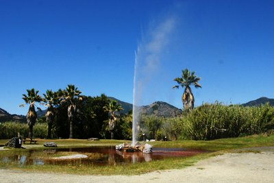 The Old Faithful geyser in Calistoga, California
