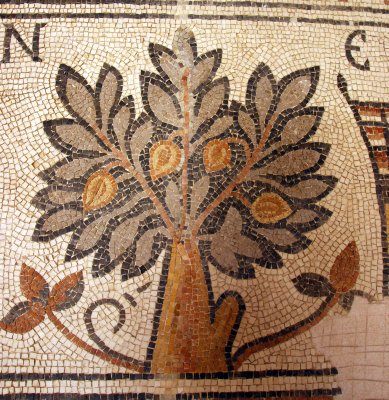 Tree of life - a favourite motive of Jordanian mosaics