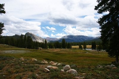 Views from Soda Springs towards Tuolumne Meadows, Yosemite Park, California, US