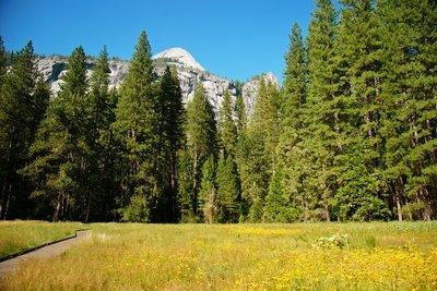 Walking around the Yosemite Village, Yosemite Park, California, US