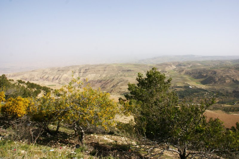 Hazy views from Mount Nebo