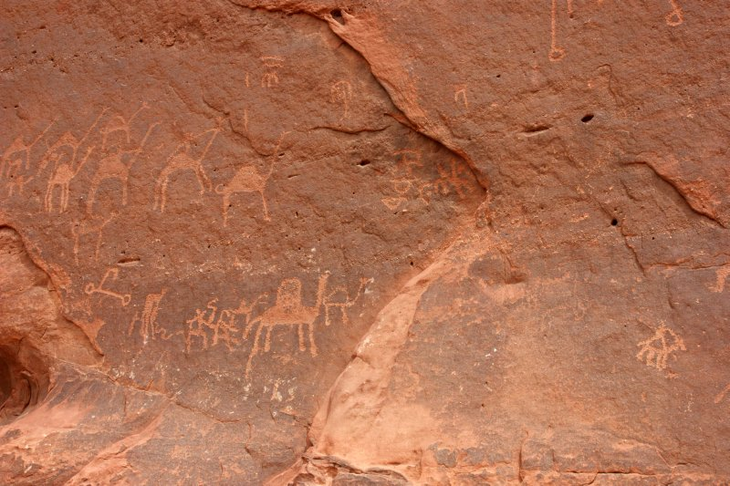 Petroglyphs of camels and bedouins in Wadi Rum