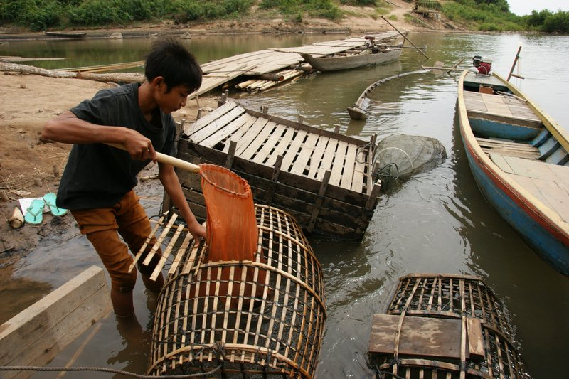 Young fisherman at the Mekong rapids