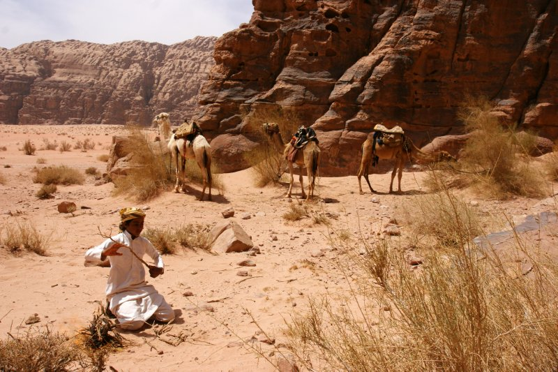 Time for a little break - Yusuf preparing tea with camels munching on whatever they can find