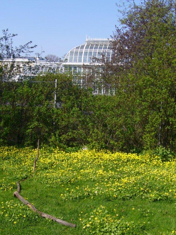 Botanical garden in Helsinki
