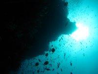 large_Bajo_Dive_Trip__44_.jpg