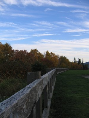 White fence and Coloured leaves