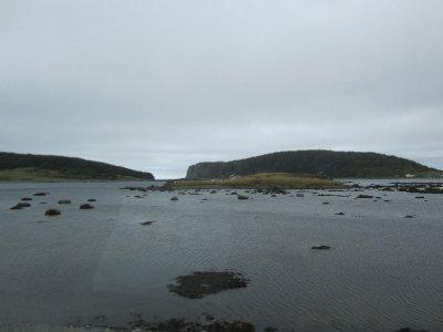 Hay, Newfoundland