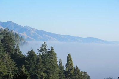 Fog- SF to LA
