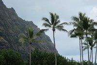 Hawaii_3_070.jpg