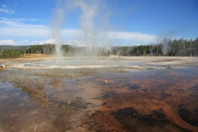 Yellowstone 126