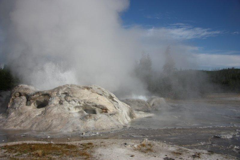 Yellowstone 154