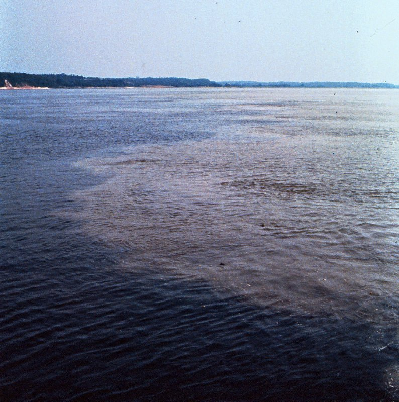Mixing of colours (rivers) on the River Amazon, near Manaus