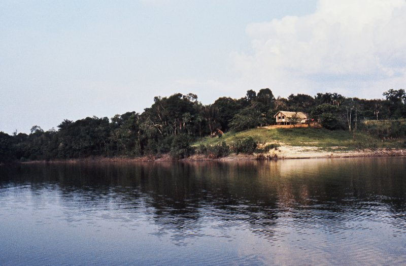 Amazon tributary river bank house
