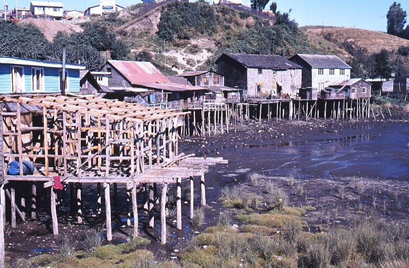 Low tid in Castro, Chiloe