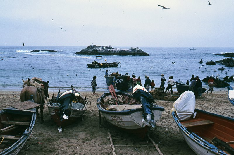 Horcon fishing village