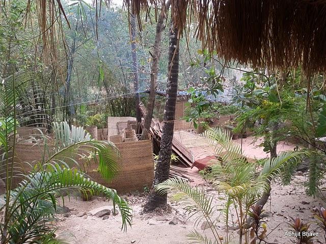 Sevas Huts - Palolem Beach