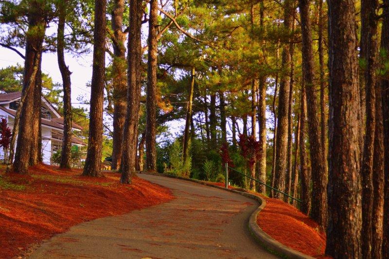 large_road.jpg