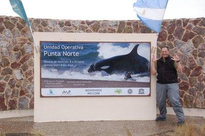 Punta_Norte_Sea_Lions__6_.jpg