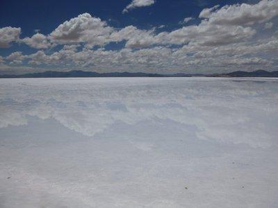 Salt_Flats__5_.jpg
