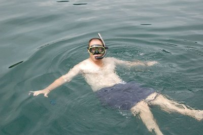 Snorkelling__2_.jpg